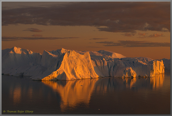 Golden icebergs